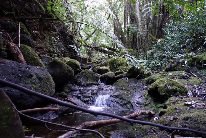 Wa'aloa stream