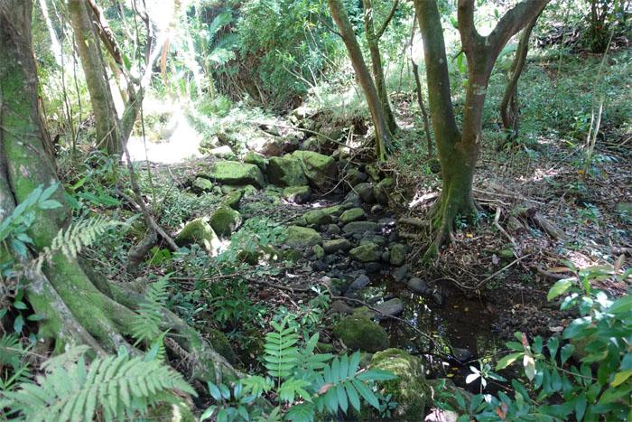 Aihualama stream
