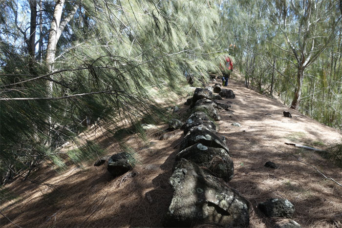 Moku boundary wall