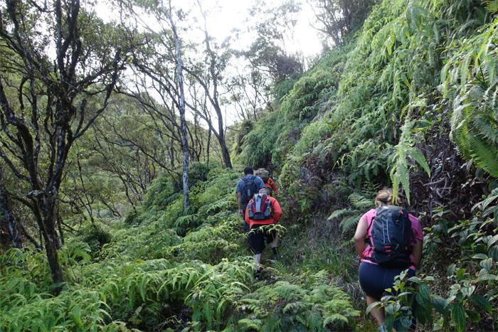 Steady climb