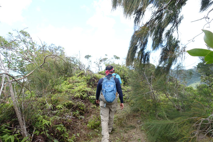 HTMC trail clearing