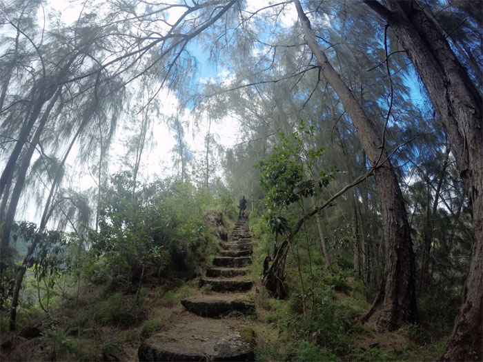 Kalihi stairs