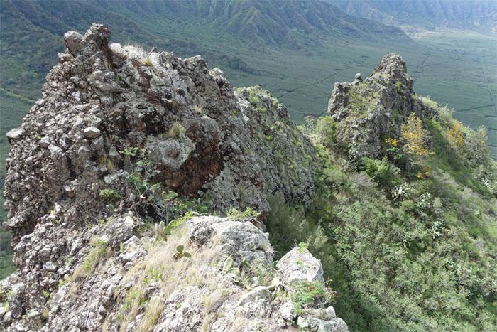 Crumbly ridge