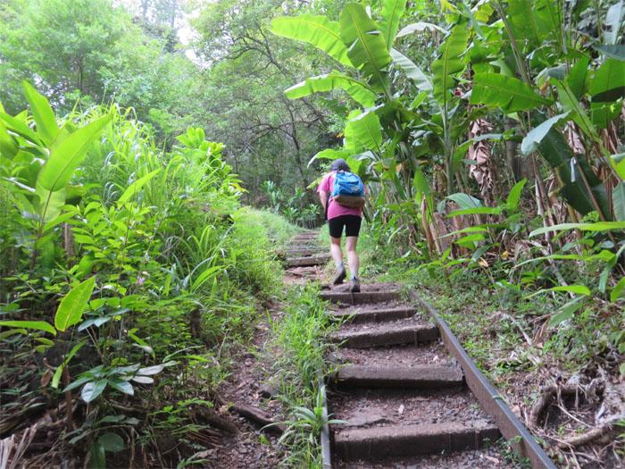 Kanealole Trail