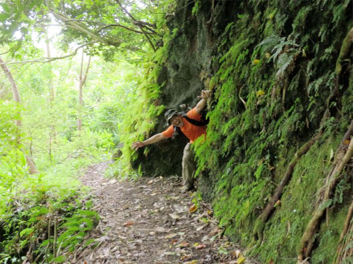 Toll trail