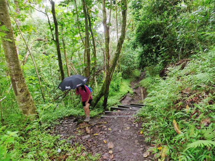 Fair weather hiker