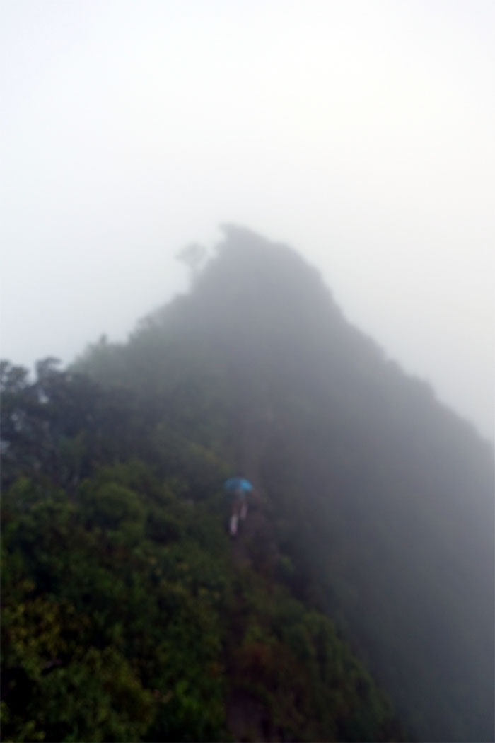 Hikers in the mist