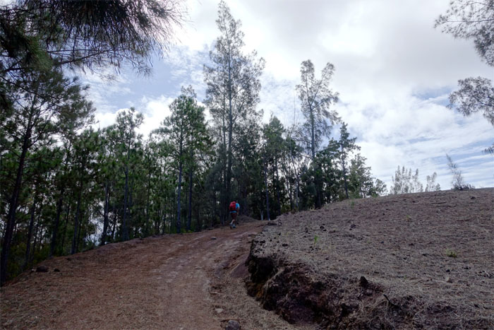 Wide trails