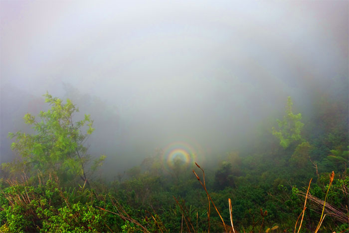 Halo rainbow