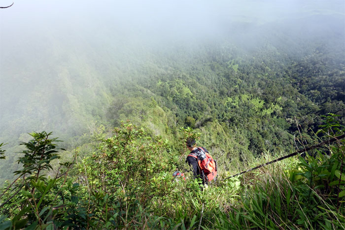 Webbing trail