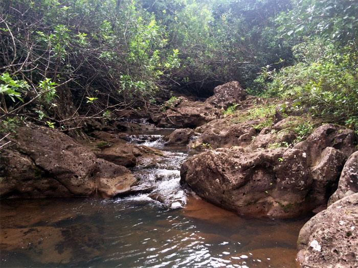 Wailele Stream
