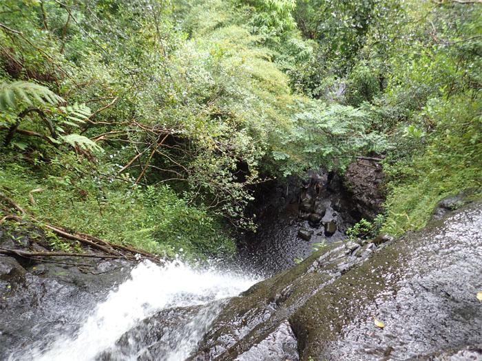 Ka'au Crater Falls #1