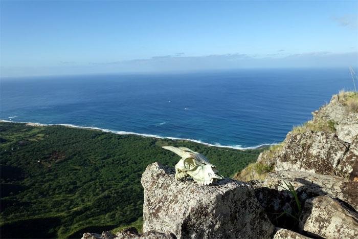 Dead Goat Ridge