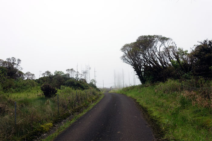Mount Ka'ala Road