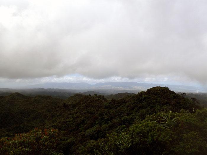 Kawailoa
