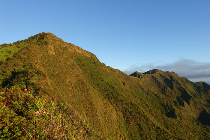 Ko'olau Summit Ridge Trail