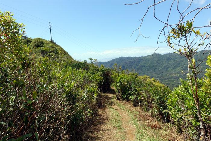Konahuanui Trail