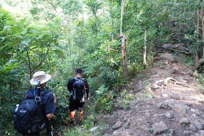 Waianae Kaala Trail
