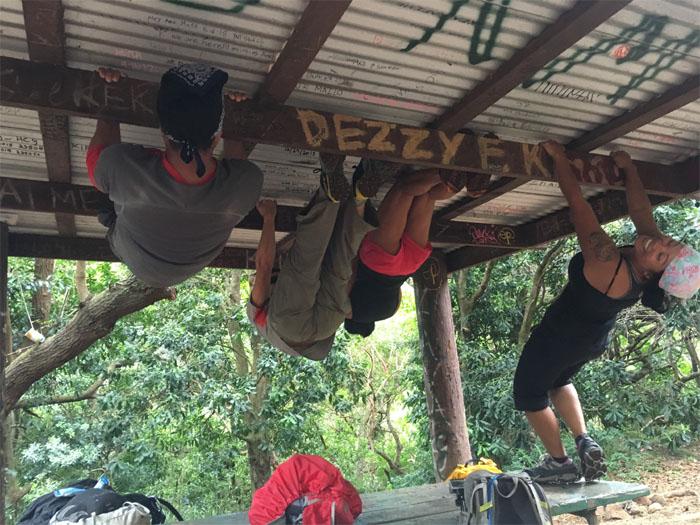 Picnic shelter pull-ups