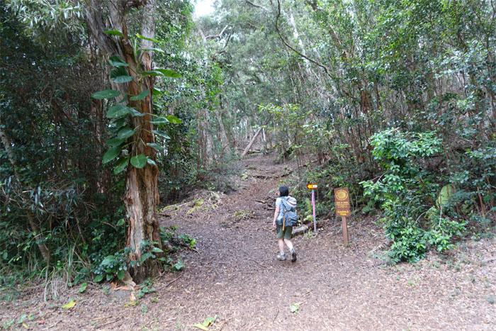 Kaunala Trail