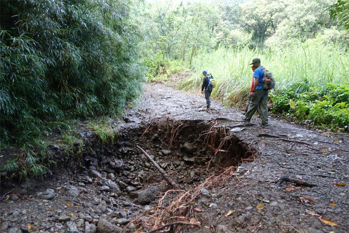 Kamananui Trail