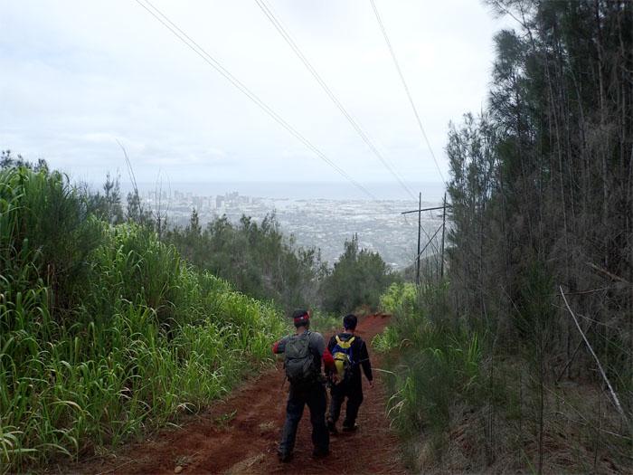 Bowman Trail