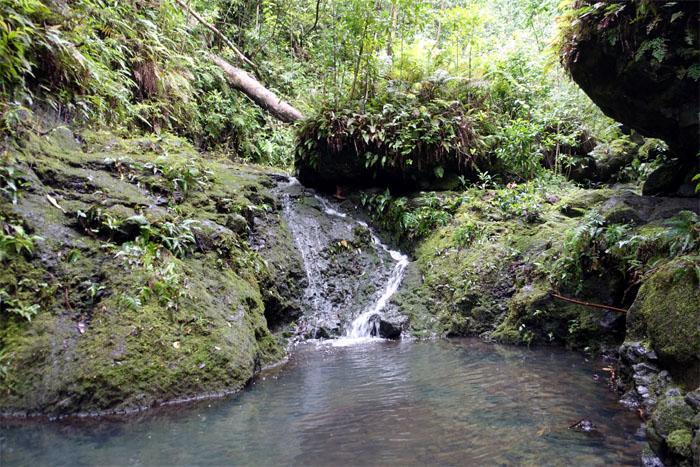 Waterfall #4