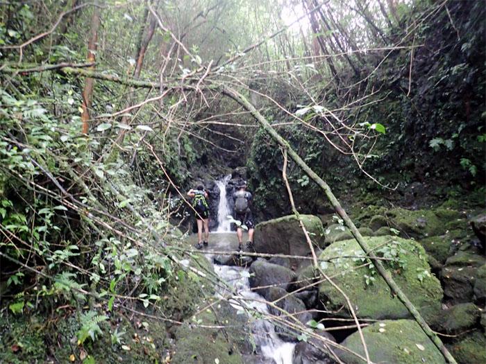 Waterfall #16