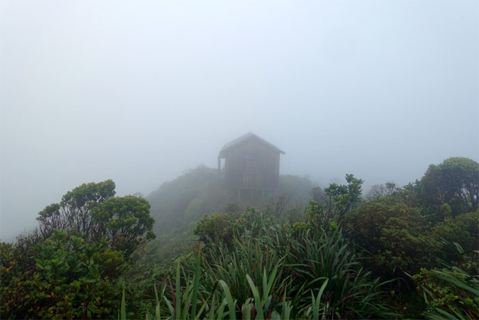 Opaeula Cabin