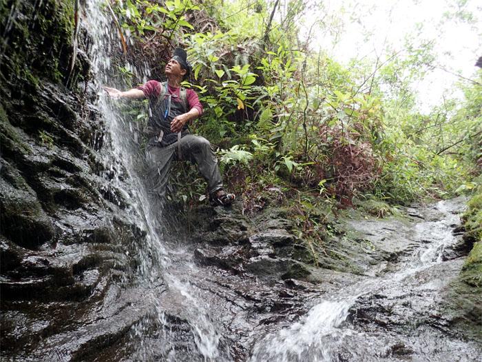 Manoa Falls #19