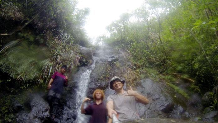 Manoa Falls #23