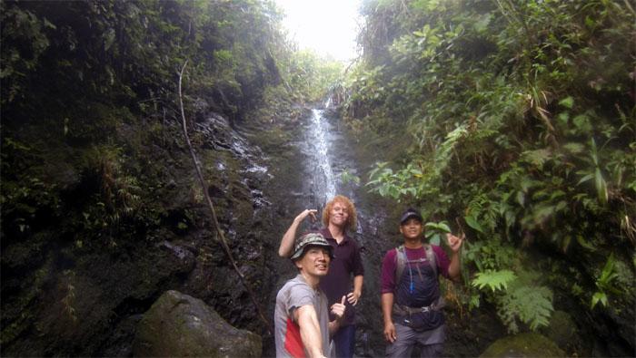 Manoa Falls #25