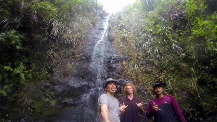 Manoa Falls #26