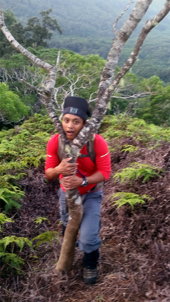 Commando Trail