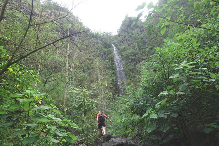 Ka'ala Falls