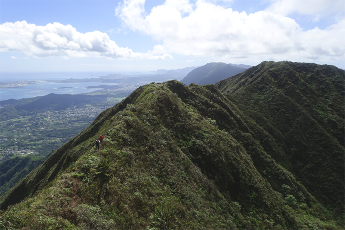 Ko'olau Summit Ridge Trail