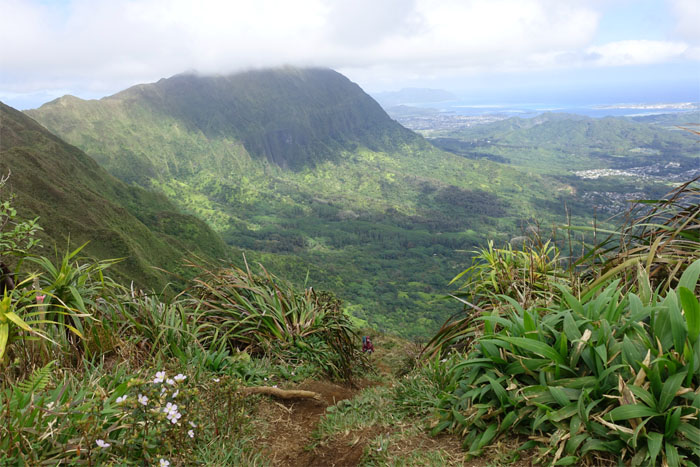 Kainawa'au Summit