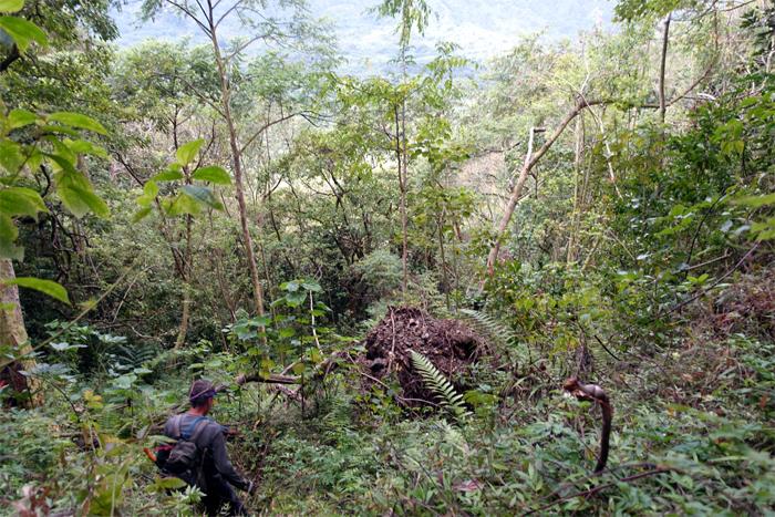 Kahana Valley
