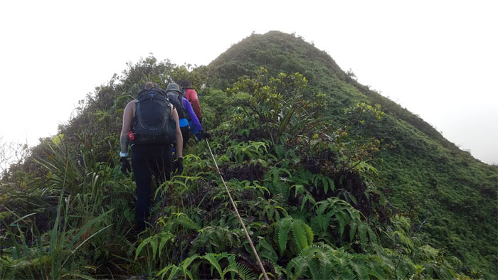 Tripler Ridge