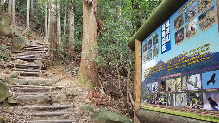 Miyukigahara Course