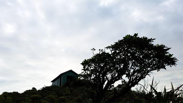 Opae'ula Cabin