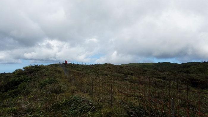 Peahinaia Trail