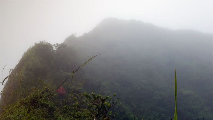 Ko'olau Summit Ridge Trail ( KSRT)