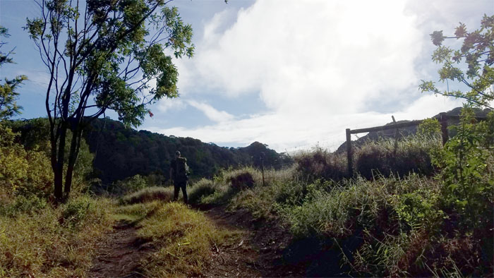 Waianae Summit Trail (WST)