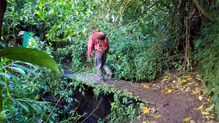Kalawahine Trail