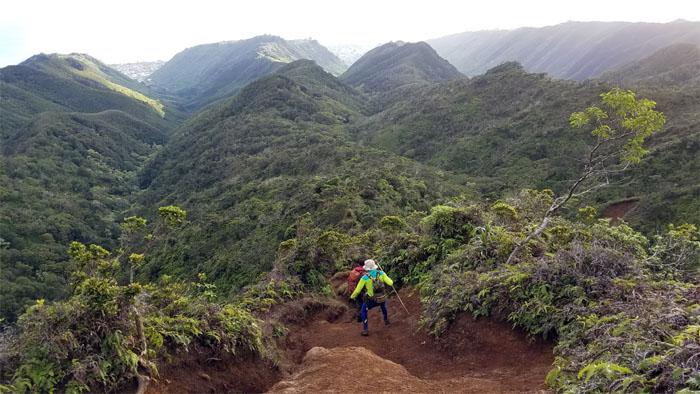 Hawaii Loa Trail
