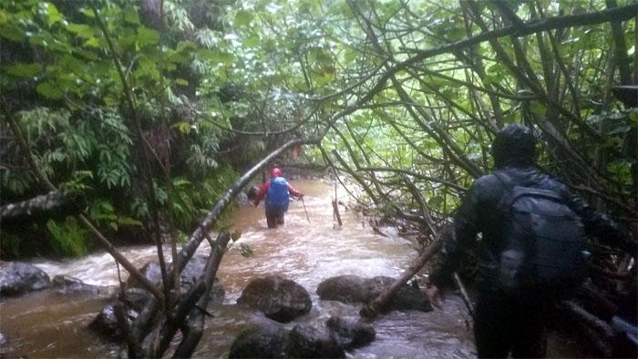 Waimano Stream