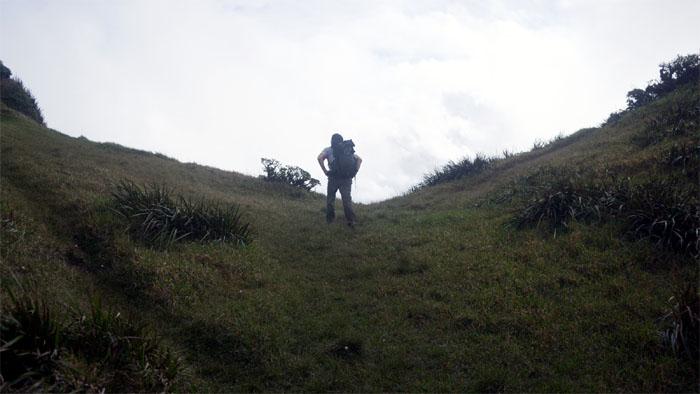 Poamoho Summit
