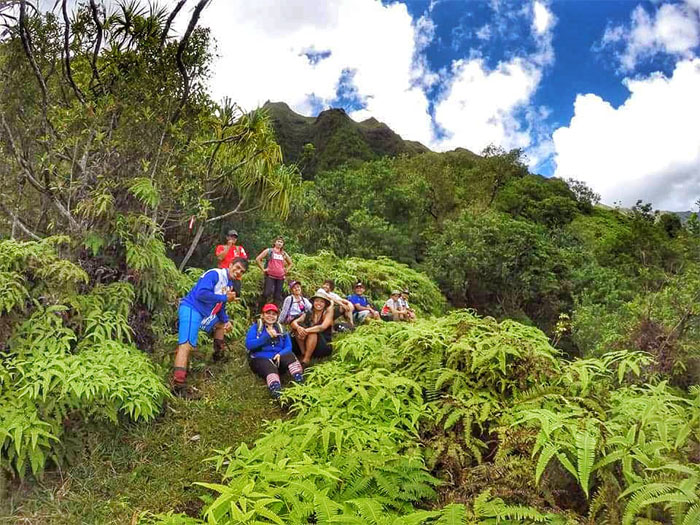 Uluhe trail