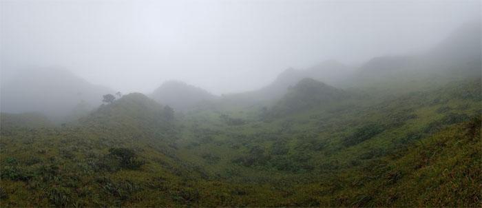 Waimalu Meadows